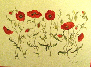 Field Poppies Mothers Day and Blank card [botanical collection]