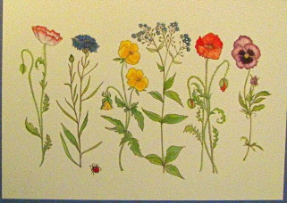 Botanical embossed.....wildflowers Happy birthday
